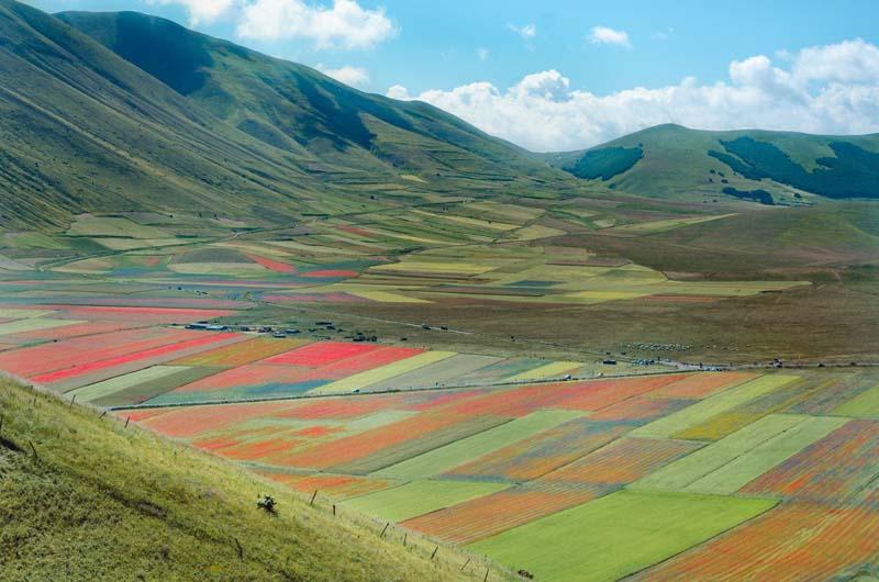 colline fiorita di castelluccio di norcia