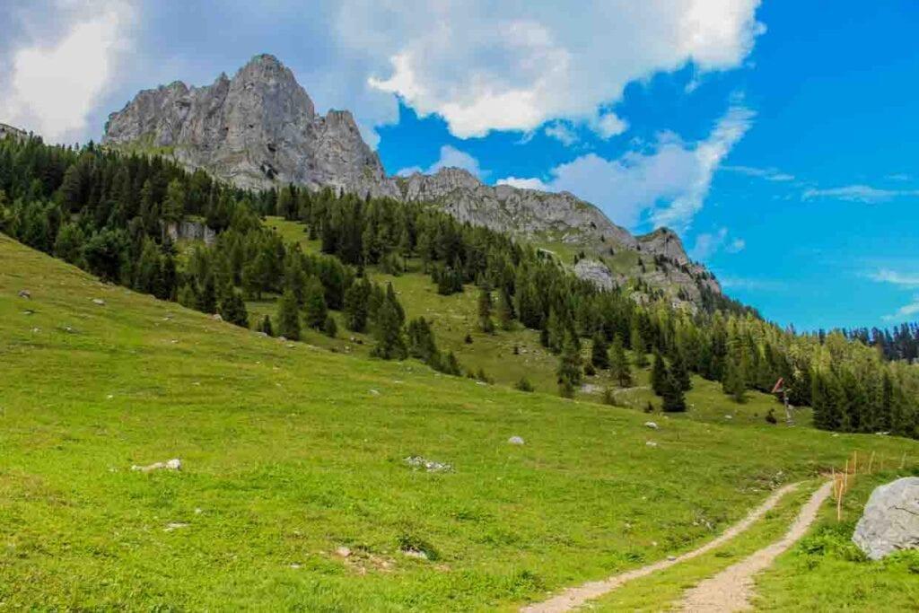 vacanze italia 2020 Sentiero lago di Tovel - Malga Tuena