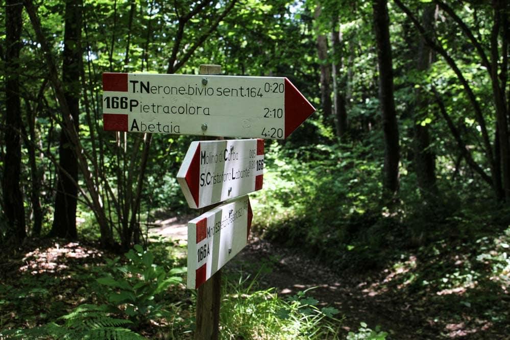 Grotte di Labante: un paradiso naturale a due passi da Bologna 1