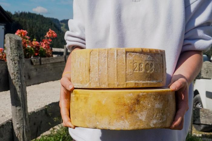 formaggi del trentino nelle mani di una ragazza